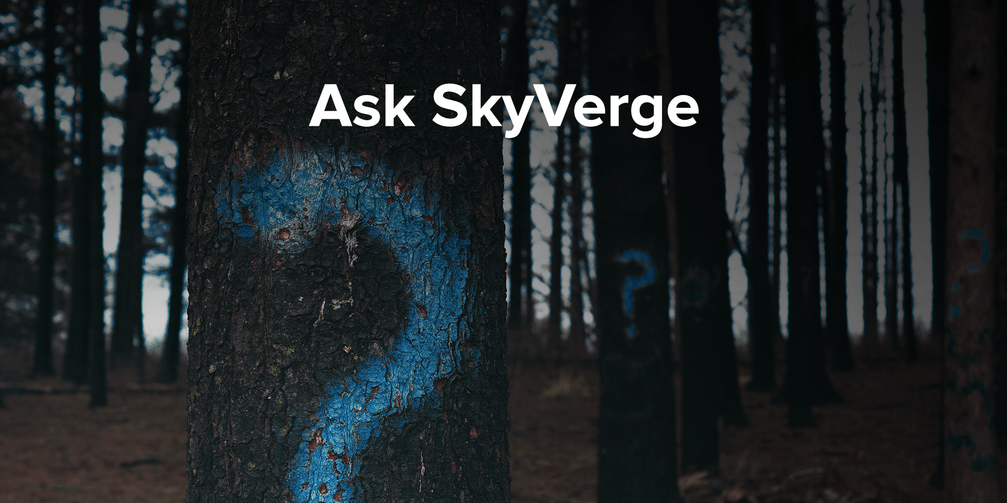 ask-skyverge